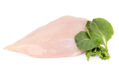 Uncooked chicken breast fillet Stock Images