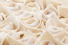 Uncooked chinese meat dumpling Royalty Free Stock Photography
