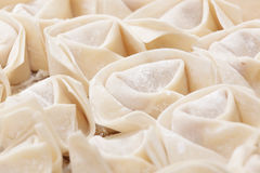 Uncooked chinese meat dumpling Royalty Free Stock Images