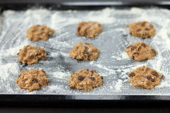 Uncooked cookies on baking tray. Uncooked oatmeal cookies with raisins on baking tray Stock Images