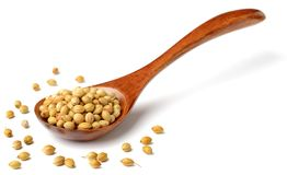 Uncooked coriander seeds in the wooden spoon, isolated on white. Background stock photo