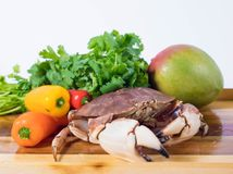 Uncooked crab with other food ingredients. Uncooked crab in the bowl getting ready to be cooked with other food ingredients such as pepper and cilantro Royalty Free Stock Photo