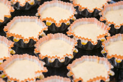 Uncooked cupcakes in tins Stock Photo