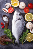 Uncooked dorado fish with rosemary and vegetables royalty free stock photo