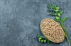 Uncooked dried chickpeas in bamboo bowl with raw green chickpea pod plant on rustic table. Heap of legume chickpea background royalty free stock images