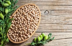 Uncooked dried chickpeas with raw green chickpea pod plant on wooden table. Heap of legume chickpea background royalty free stock image