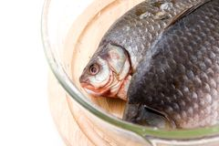 Uncooked fish Stock Photography
