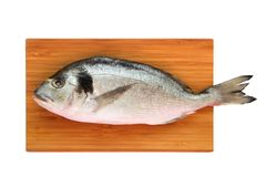 Uncooked fish dorado on wooden board. Isolated Stock Photography