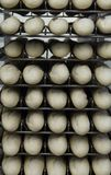 Uncooked French bread Stock Photo