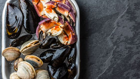 Uncooked fresh seafood Mussels, Clams, Vongole and Crabs. Uncooked raw fresh seafood - mussels, clams, vongole and crabs on ice on blac stone slate background Royalty Free Stock Images