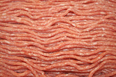 Uncooked Ground Beef and Pork Mix Stock Photography