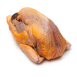Uncooked Guinea fowl Royalty Free Stock Photography