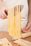 Uncooked homemade egg pasta Royalty Free Stock Image