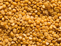 Uncooked indian dhal lentil ood background Stock Images