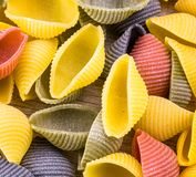 Uncooked Italian conchiglie pasta Stock Photos