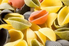 Uncooked Italian conchiglie pasta Royalty Free Stock Photo