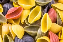 Uncooked Italian conchiglie pasta Stock Photography