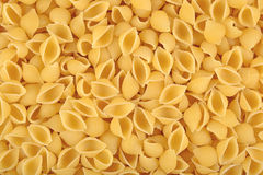 Uncooked italian pasta shells as background Royalty Free Stock Photography
