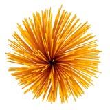Uncooked italian spaghetti. Stock Image