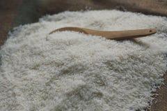Uncooked kleiści ryż Zdjęcie Royalty Free