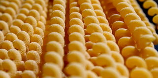 Uncooked long fusilli pasta Royalty Free Stock Photo