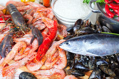 Uncooked marine products and  seasonings at kitchen Stock Photos