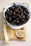 Uncooked mussels Royalty Free Stock Images