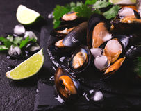 Uncooked mussels on ice with cilantro and coriander stock image