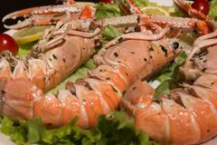 Uncooked Orange Lobsters, Aquatic Crustaceans inside White Tray royalty free stock photos