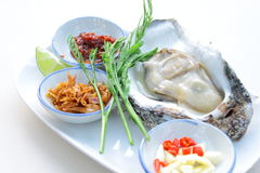 Uncooked oyster on restaurant eat with side dish Royalty Free Stock Images