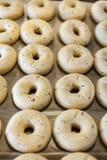 Uncooked pączków chleby Zdjęcia Royalty Free