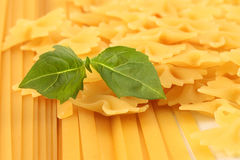 Uncooked Pasta with a Basil Leaf Stock Photo