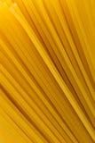 Uncooked pasta spaghetti macaroni Royalty Free Stock Photos
