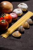 Uncooked pasta and tomatoes , cartridge shells Stock Photos