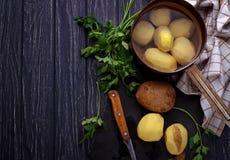 Uncooked peeled potatoes on dark background Stock Photos