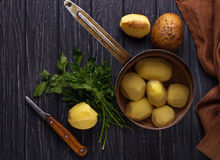 Uncooked peeled potatoes on dark background Royalty Free Stock Photos