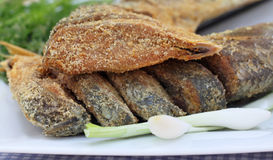 Uncooked preserved Ilish fish with vegetables Stock Photography