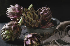 Uncooked purple artichokes. Uncooked whole organic wet purple artichokes in vintage bowl with textile sackcloth over dark wooden background. Rustic style Stock Photography
