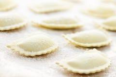 uncooked ravioli royaltyfri foto