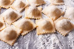 Uncooked ravioli with flour on the table. horizontal Royalty Free Stock Images