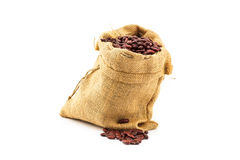 Uncooked red kidney bean Royalty Free Stock Photo