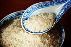 Uncooked rice Royalty Free Stock Image