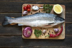 Uncooked salmon Royalty Free Stock Images