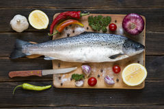 Uncooked salmon Stock Images
