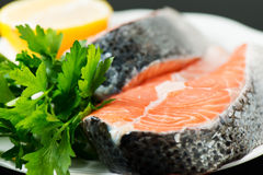 Uncooked salmon stake with herbs Royalty Free Stock Photos