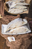 Uncooked salted cod on fishing nets Stock Photography