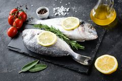 Uncooked sea bream fish, olive oil, lemon and spices on slate. Uncooked sea bream fish with lemon, rosemary, olive oil and spices on slate over dark background royalty free stock photos