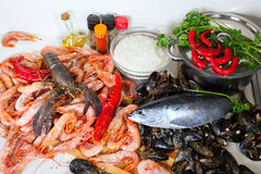 Uncooked  sea food specialties Royalty Free Stock Photography