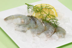 Uncooked shrimps Royalty Free Stock Images
