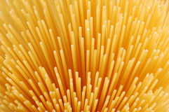 Uncooked spaghettis Stock Image